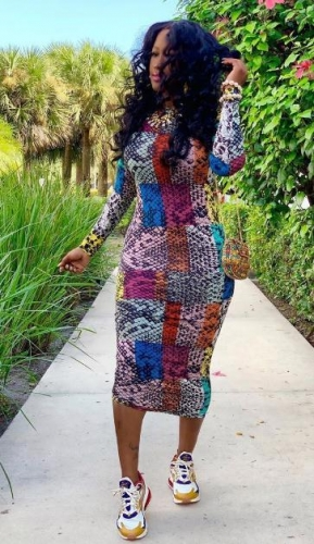 Charming Multicolor print dress