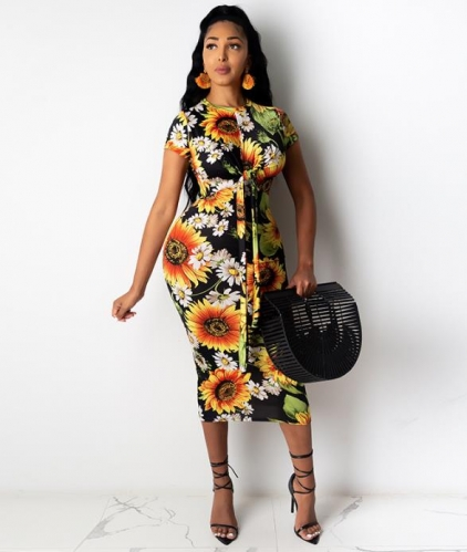 Charming Chrysanthemum printed dress