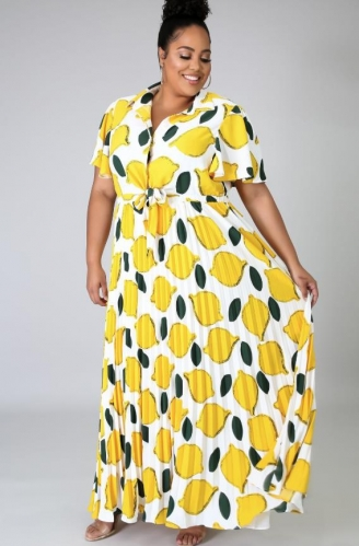 Charming Plus Size Fruit print pleated dress