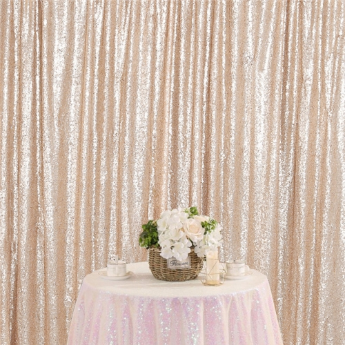 8ftx8ft Champagne Sequin Backdrop