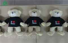 Custom Sweater Teddy Bear