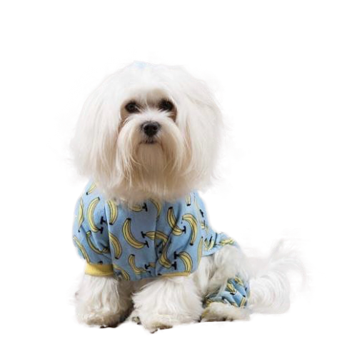 Cutebone soft cotton Banana Dog Pajamas P06