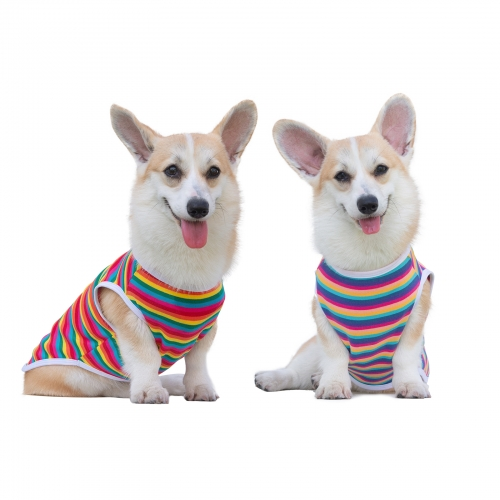 Rainbow Color Dog shirt