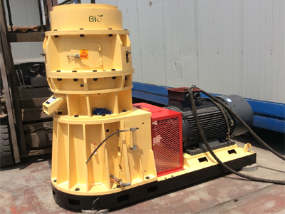 Thailand clients order SKJ3-550 biomass energy pellet machine