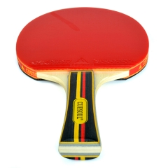 CUESOUL Shakehand (Long Handle) Table Tennis Racket