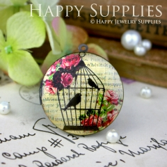 1pcs 33mm Birds  Cage Rose Handmade Antique Bronze Brass Photo Round Locket Pendant PL-33-073