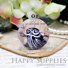 1pcs 33mm Owl Handmade Antique Bronze Brass Photo Round Locket Pendant PL-33-W21