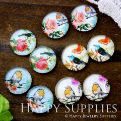 10pcs 12mm MGC99 Handmade Photo Glass Cabochon Bird