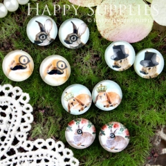 10pcs 12mm MGC64 Handmade Photo Glass Cabochon Animal Mustache