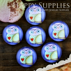 10pcs 12mm Owl Handmade Photo Glass Cabochon GC12-609