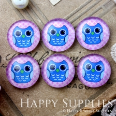 10pcs 12mm Owl Handmade Photo Glass Cabochon GC12-612