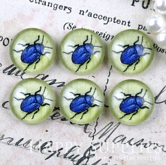 10pcs 12mm Blue Insect Handmade Photo Glass Cabochon GC12-1182