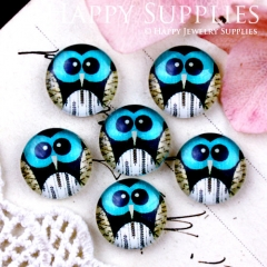 10pcs 12mm Owl Handmade Photo Glass Cabochon GC12-649