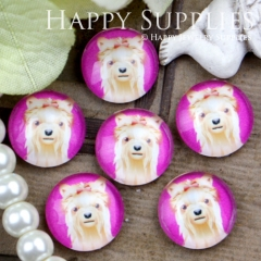 10pcs 12mm Handmade Photo Glass Cabochon GC12-415