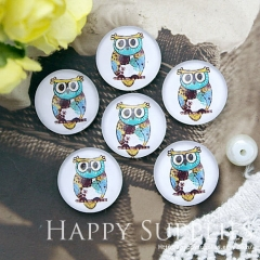 10pcs 12mm Owl Handmade Photo Glass Cabochon GC12-1018