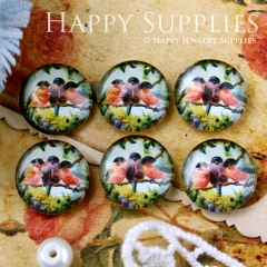10pcs 12mm Swallow Bird Handmade Photo Glass Cabochon GC12-555