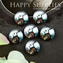 10pcs 12mm Mr.Rabbit Alice Handmade Photo Glass Cabochon GC12-051