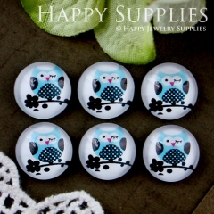 10pcs 12mm Owl Handmade Photo Glass Cabochon GC12-590