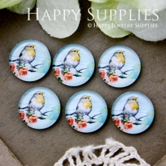 10pcs 12mm Bird Handmade Photo Glass Cabochon GC12-567