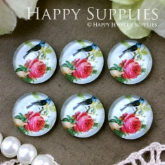 10pcs 12mm Bird Handmade Photo Glass Cabochon GC12-569