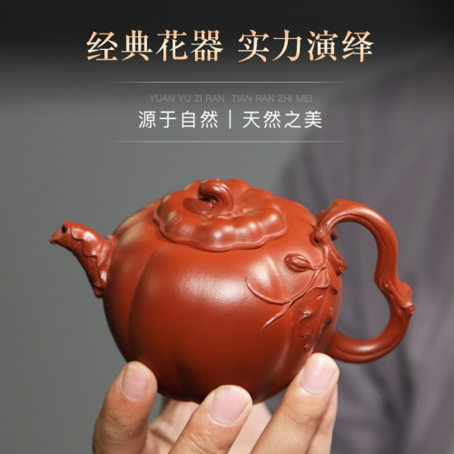 yixing teapot clayteapot chinese pot zhuni clay HL001(048)