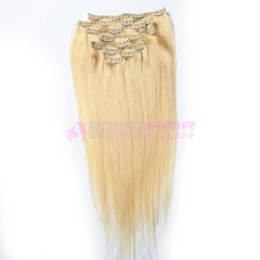 Clip In Virgin Brazilian Straight Hair Clip In Human Hair Extensions #24 Color Clip In Hair Extension