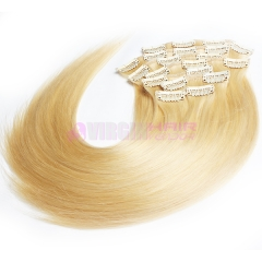 Fast Shipping 100% Brazilian Virgin Remy Clips In Human Hair Extensions Full Head #613
