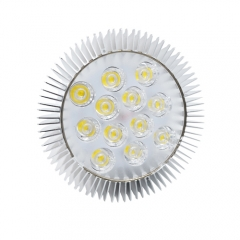 E27 E26 12W PAR38 LED Spot Light Bulb Not Dimmable