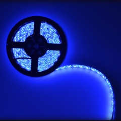 5050 LED Strip,Blue Light,Waterproof,5M,DC 12V,LED Tape Light