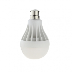 RANPO B22 12W LED Globe Bulb Warm / Cool White,Energy Saving Lamp For Home
