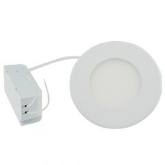 Ranpo Dimmable LED Panel Light Round 3W Warm Cool White Downlight with LED Driver AC 110V 220V