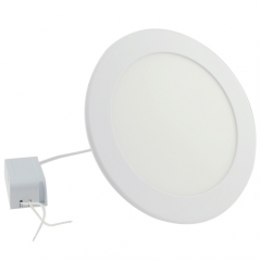 Ranpo LED Panel Light Round 12W Warm Cool White Downlight with LED Driver AC 85-265V