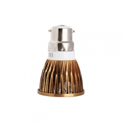 Ranpo Bronze Color B22 12W LED Spotlight Warm Cold Natural White AC 85-265V