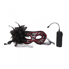 Neon Rave Eye-Mask Sexy Lace Venetian Masquerade Ball EL Wire + Controller Halloween Party Fancy Dress Costume