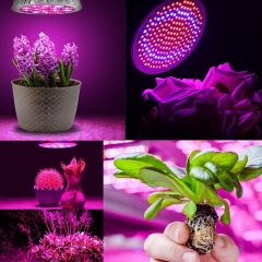 RANPO 3W E27  LED Grow Light Bulb Lamp Lights Kits For Plant
