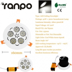 RANPO 40W LED Ceiling Light Recessed Downlight Lamp 220V Cool White + Driver