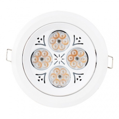 RANPO 30W LED Ceiling Downlight Lamp Recessed Down Lights Bright 220V + Driver