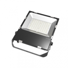RANPO 100W LED Flood Light IP65 Waterproof 3030 SMD Spotlight Lamp 110V 220V