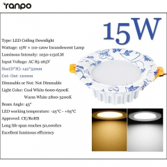 RANPO 15W LED Recessed Ceiling Downlight Fixture Cool Warm White Lamp Bright