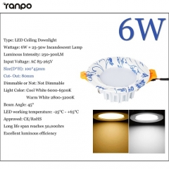 RANPO 6W LED Recessed Ceiling Downlight Fixture Cool Warm White Lamp Bright
