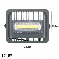 RANPO 100W Waterproof IP66 COB Chip Led Outdoor Floodlight Bulb Lamp White Light