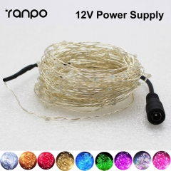 RANPO 5M 50Leds 10M 100Leds LED Fairy Light String Copper Wire Fairy Lights 12V Powered Xmas Wedding Party Fairy Holiday Party Decor