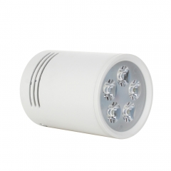 RANPO Dimmable 5W White Shell LED Ceiling Downlight Surface Mounted Fixture 110V 220V