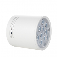 RANPO Dimmable 15W White Shell LED Ceiling Downlight Surface Mounted Fixture 110V 220V