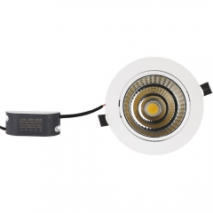 RANPO 12W Recessed COB LED Ceiling Light Downlight Bulb Lamp AC 85-265V + Diver