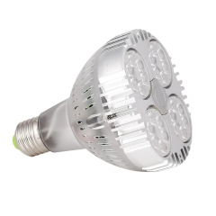 RANPO PAR30 35W E27 LED Bulb Spotlights Transparent Shell Cool Neutral Warm White Lamp 3030 SMD OSRAM 85-265V