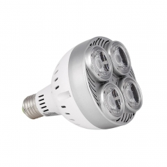 RANPO PAR30 35W E27 LED COB OSRAM Bulb Spotlights Cool Neutral Warm White Lamp SMD 85-265V