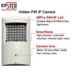 Enster CAMHI 1080P PIR Style Onvif WiFi IP Security Camera Power Input Invisible 940nm IR LED Support TF Card Recording