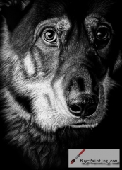 Custom Drawing-The Dog with dark background