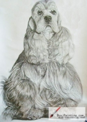 Custom Drawing-A long hair dog